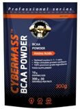 BCAA Powder 300г.